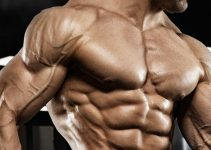 Best Supplements For Muscle Growth In 2020