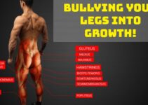 Leg Workout For Mass – Bullying Your Legs Into Growth For 2021!