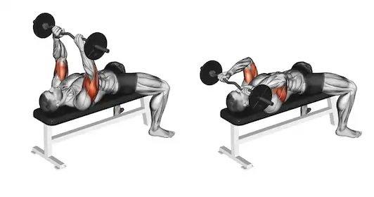 Triceps Press.