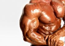 Top 10 Tips For Building Big Massive Arms